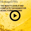 The most flexible and complete thickener for acidic formulations